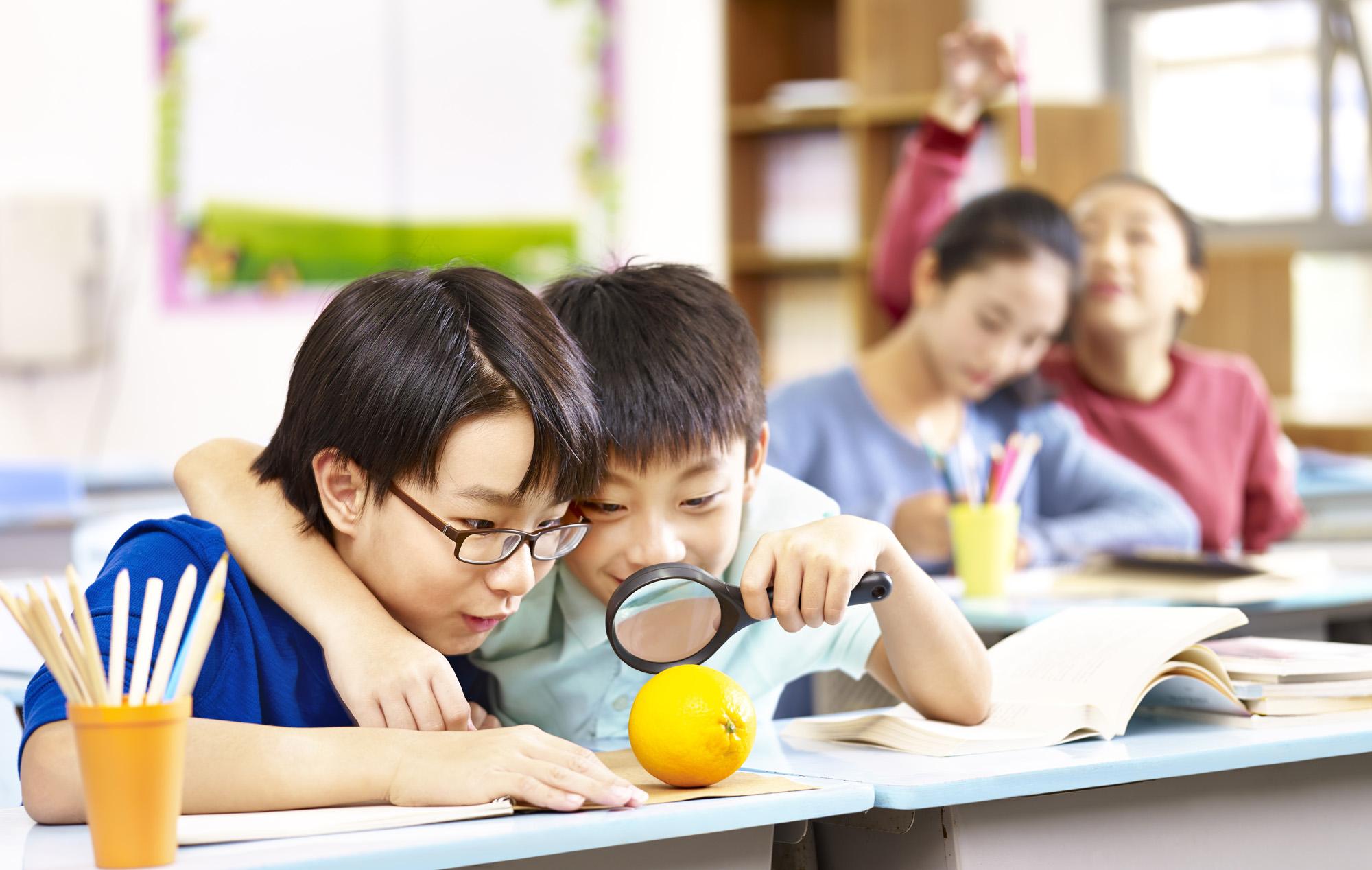 實驗教育是什麼